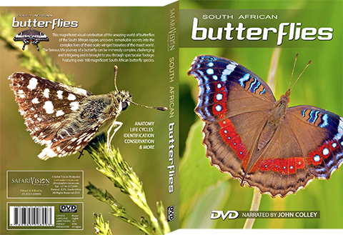 Butterfly DVD South African Butterflies Film